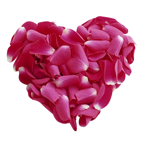 http://magnolias.m.a.pic.centerblog.net/0c6ff7e2.png