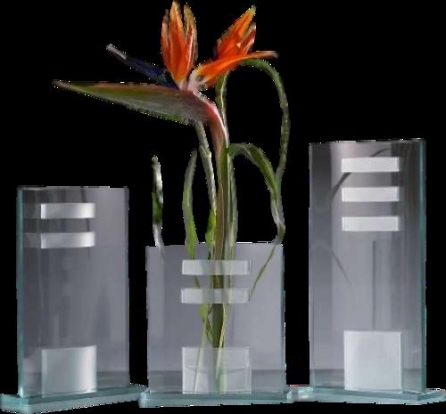 fleurs dans vase page 19. Black Bedroom Furniture Sets. Home Design Ideas