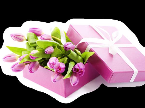 http://magnolias.m.a.pic.centerblog.net/16b9c0a1.png