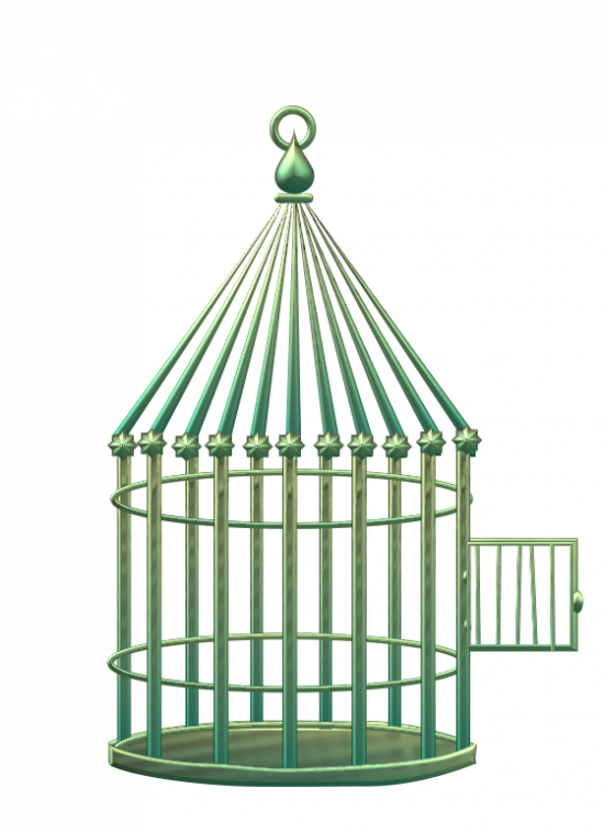 comment dessiner une cage d oiseau. Black Bedroom Furniture Sets. Home Design Ideas