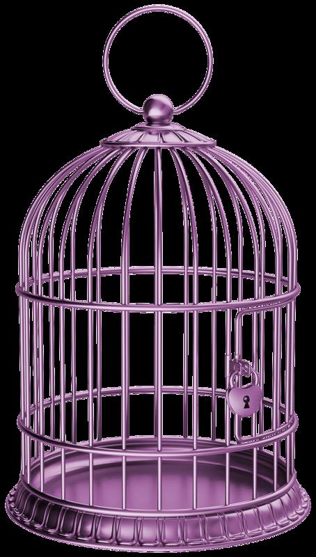 Dessin Oiseau En Cage cage oiseau vide