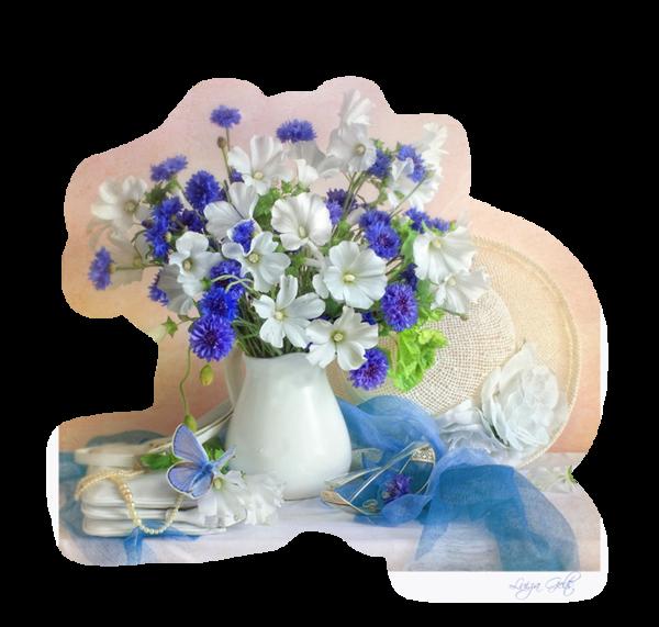 http://magnolias.m.a.pic.centerblog.net/3b5c073c.png?0.05380975245498121
