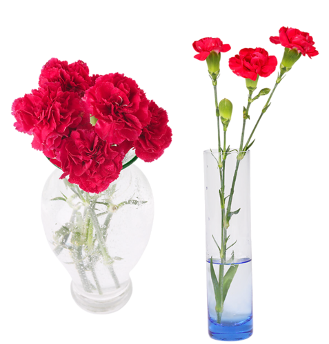 fleur dans vase transparent fabulous superior composition florale dans vase transparent with. Black Bedroom Furniture Sets. Home Design Ideas