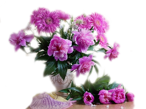 http://magnolias.m.a.pic.centerblog.net/57c8c912.png?0.2724579372443259