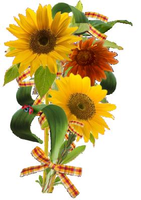 Tubes fleurs tournesol page 3 - Dessin de tournesol ...