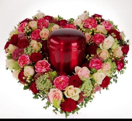 http://magnolias.m.a.pic.centerblog.net/7678e954.png