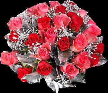 http://magnolias.m.a.pic.centerblog.net/7e17756f.png