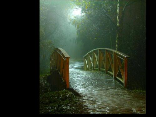 Ponts, quais ... 823b16b6