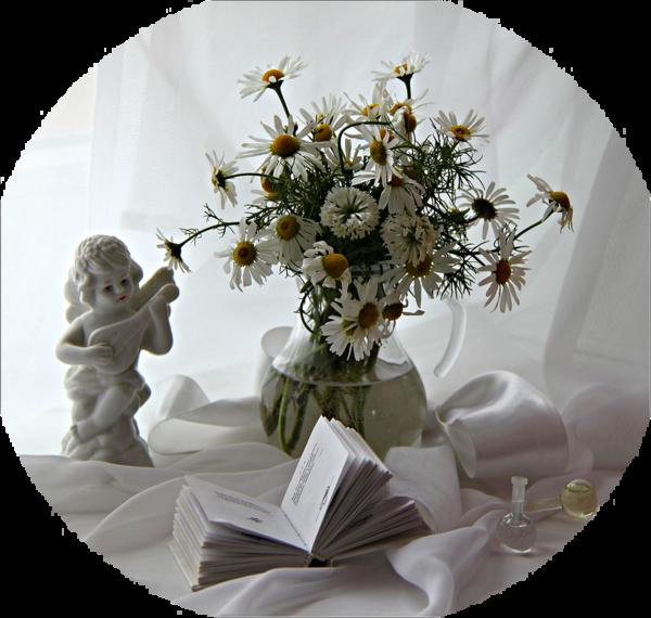 http://magnolias.m.a.pic.centerblog.net/96af6b33.png?0.5192627008073032