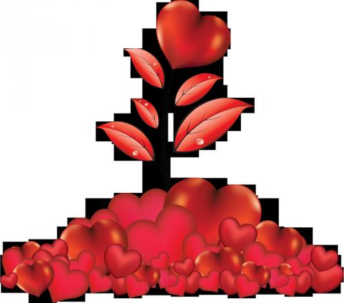 http://magnolias.m.a.pic.centerblog.net/b31d0857.png