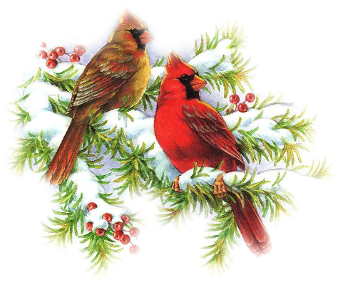 Clip On Bird Christmas Ornaments