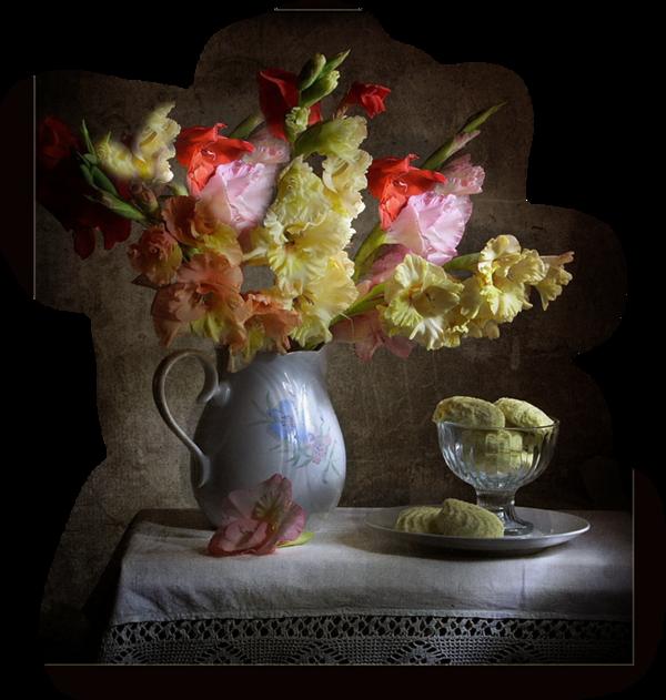 http://magnolias.m.a.pic.centerblog.net/d65a3e56.png?0.7196079532150179