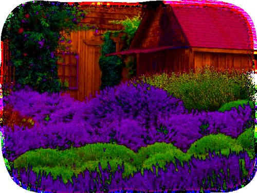 http://magnolias.m.a.pic.centerblog.net/e00165ba.png