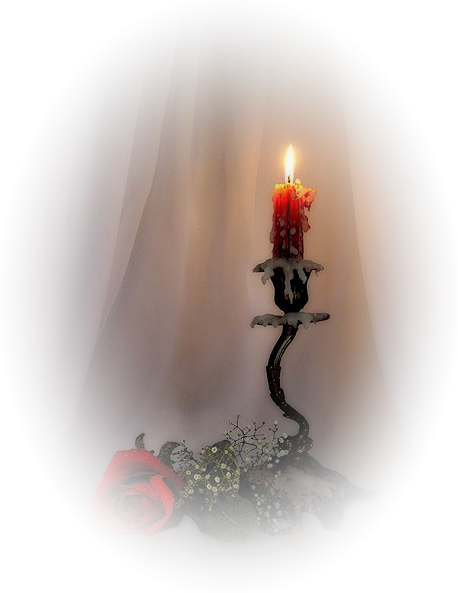 http://magnolias.m.a.pic.centerblog.net/e26a400e.png