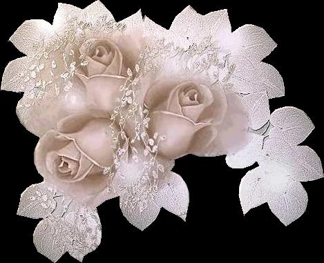 http://magnolias.m.a.pic.centerblog.net/e9c6b3cc.png?0.4103600562084466