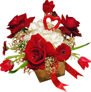http://magnolias.m.a.pic.centerblog.net/ebb7a557.png