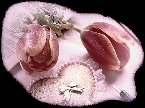 http://magnolias.m.a.pic.centerblog.net/f189f33e.png