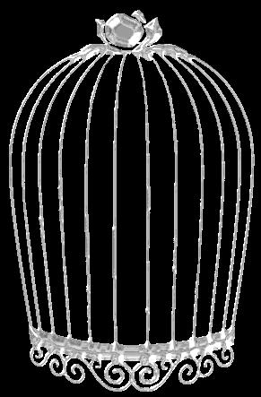 Cage Oiseau Vide Page 2
