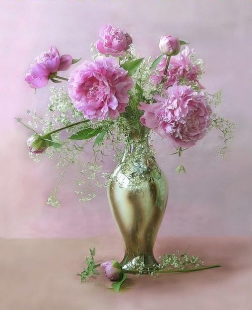 http://magnolias.m.a.pic.centerblog.net/f8d8cf62.png?0.8071392753627151