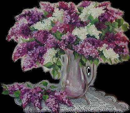 http://magnolias.m.a.pic.centerblog.net/o/23e21fe2.png