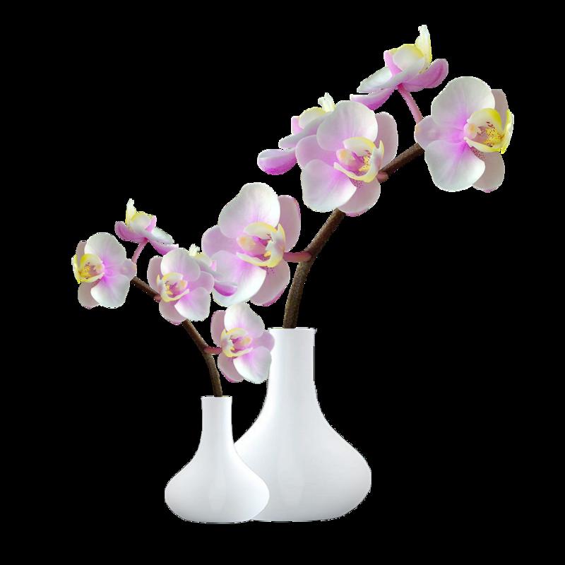 fleurs dans vase page 26. Black Bedroom Furniture Sets. Home Design Ideas