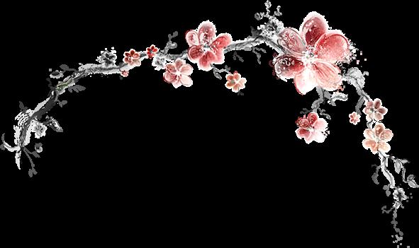Dessin De Cerisier Japonais Tatouage Cerisier Japonais With Dessin