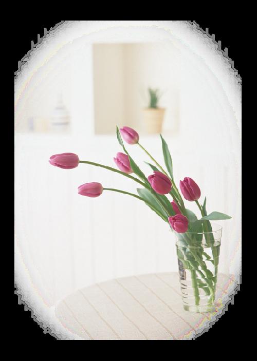 fleurs dans vase page 9. Black Bedroom Furniture Sets. Home Design Ideas